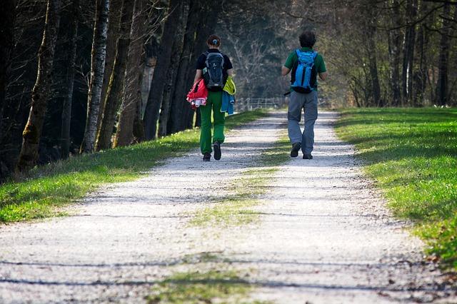 turisti na cestě u lesa